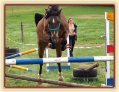 Čtyřletý WPBr Gimli a skok ve volnosti