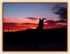 Zimní východ slunce
