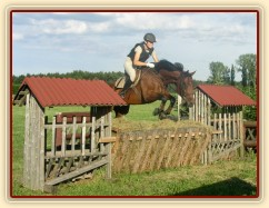 Trénink terénních skoků, skok přes krmítko