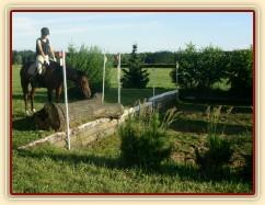 Trénink terénních skoků, Agáta pečlivě studuje místo doskoku, než se odhodlá skočit