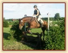 Trénink terénních skoků, skok přes kozu u jámy, kůň i jezdec se plně soustředí na jámu za skokem