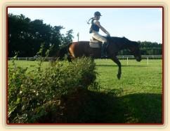 Trénink terénních skoků, skok přes proutěnku s příkopem za ní