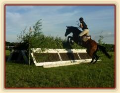 Trénink terénních skoků, skok přes dvě proutěnky stojící proti sobě (skok je přes 2 metry dlouhý a proutí je vysoké tak 180cm)