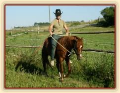 Janek poprvé jde pod jezdcem po týdnu práce ze země.
