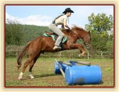 """Skákání skokové řady - oxer. Už třetí skokovou hodinu skáče jako """"profík"""" :-)"""