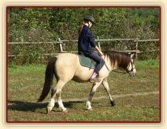 Radka a galen: uvolňování koně v kroku na dlouhé otěži