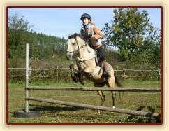 Tereza a Greisy: menší skoky už zvládají bez držení se sedla