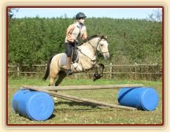 Tereza a Greisy: skoky přes větší překážky také nejsou problém, jen se jezdkyně jednou rukou ještě drží sedla.