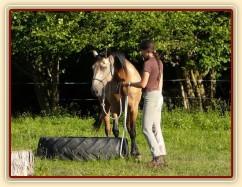 Práce ze země, stoupnutí do pneumatiky