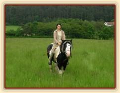 Vyjížďka - krok směrem ke koním