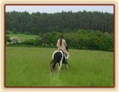 Vyjížďka - krok směrem od koní