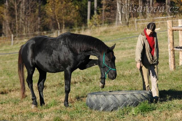 Říjen 2010, práce ve volnosti, stoupnutí do pneumatiky. Foto Olga Procházková
