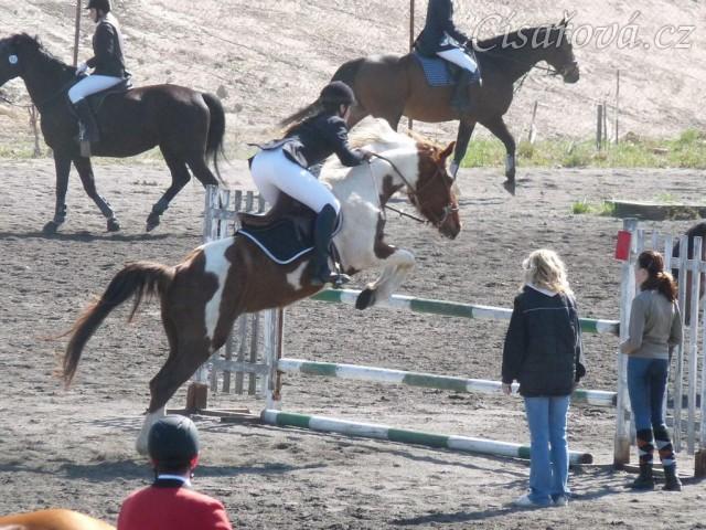 Vikina skáče na opracovišti