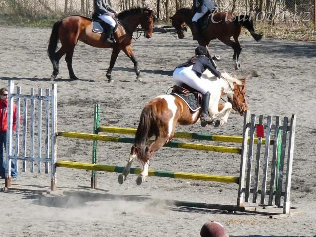 Vikina skáče na opracovišti před soutěží ZL