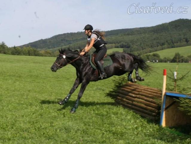 4.9.2011 - Carthago si jede pro 4. místo v soutěži všestrannosti stupně ZL v Borové