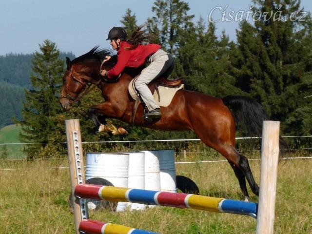 Bára při skokovém tréninku, skok přes sudy, začátek října 2011