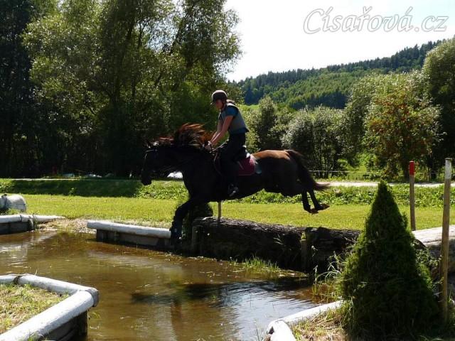 Arwen a seskok do vody, Crossový trénink v Borové 29.8.
