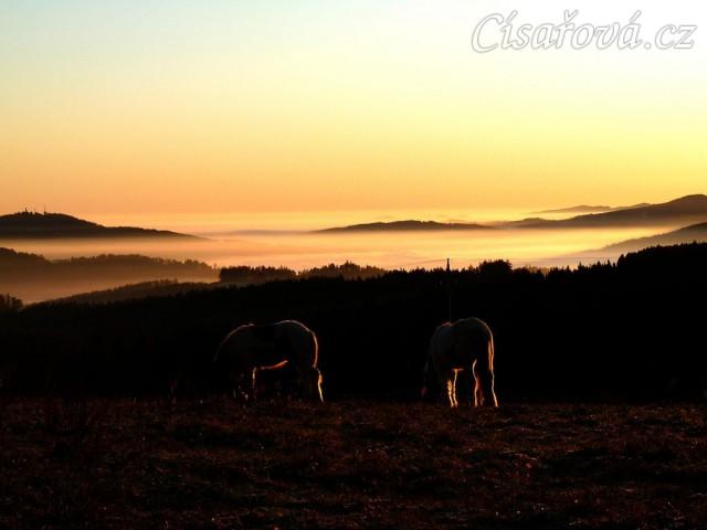 20.11.2011 - Když je inverze... Siluety pasoucích se koní při východu slunce, v údolích se válí mlhy