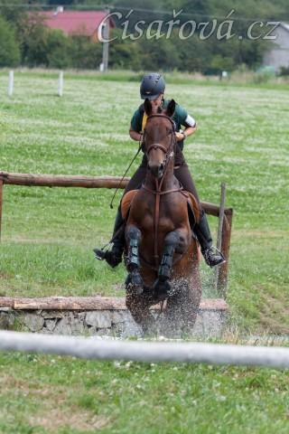 Ascara, KMK čtyřletých koní ve všestrannosti (ZK), Humpolec 18.7.2014