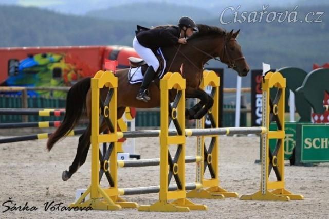Ascara, KMK čtyřletých koní ve skocích (ZL), Zduchovice 20.8.2014
