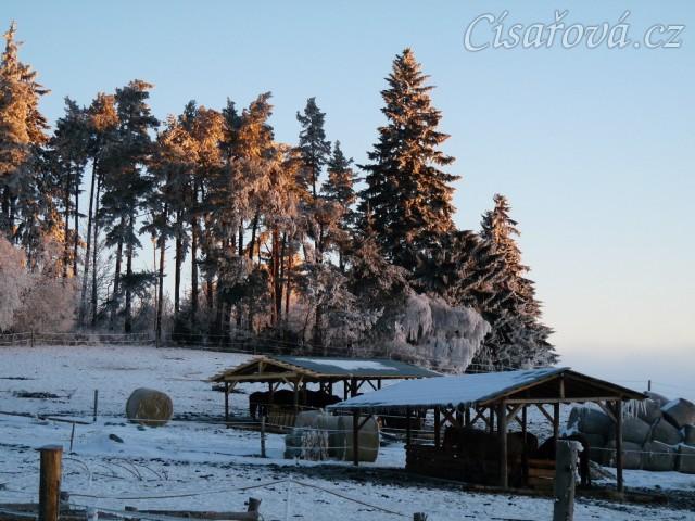 Zimní ráno...